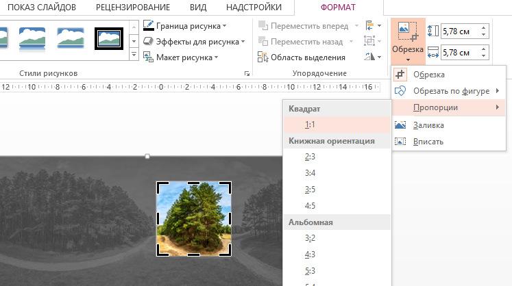 Установка пропорций обрезки при редактировании рисунков для презентаций